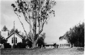 SUMC Campus c1949